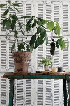 Esta Greenhouse 138882