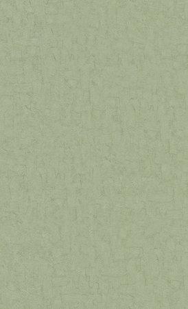 BN Van Gogh 2019 (Met Gratis Perfax Lijm!) 220073