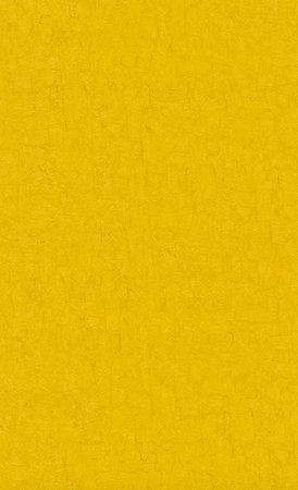BN Van Gogh 2019 (Met Gratis Perfax Lijm!) 220077
