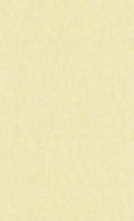 BN Van Gogh 2019 (Met Gratis Perfax Lijm!) 220078