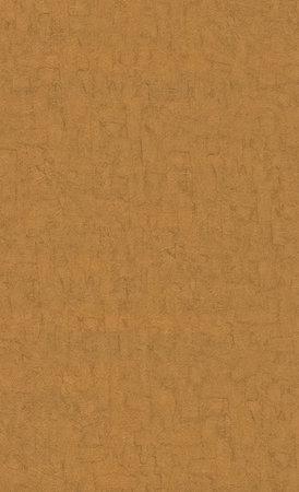 BN Van Gogh 2019 (Met Gratis Perfax Lijm!) 220080