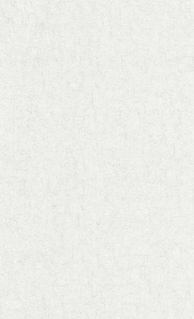 BN Van Gogh 2019 (Met Gratis Perfax Lijm!) 220083