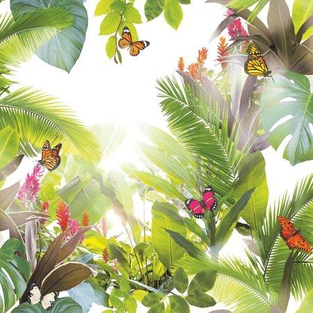 Arthouse Tropics  Amazonia Citrus 690300