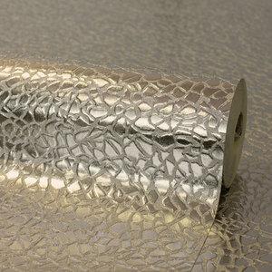 Platinum fd42482 Zilver