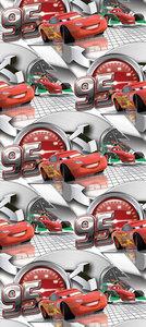 AG Disney Cars WPD9704
