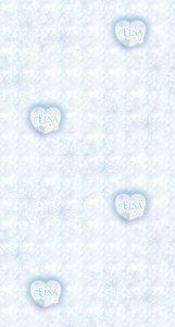 AG Disney Frozen Elsa  WPD9751
