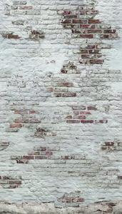 Dutch Wallcoverings Exposure EP6101 (Met Gratis Lijm!)
